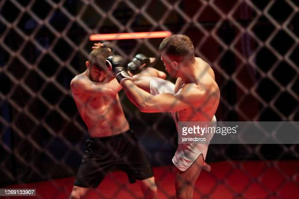 mma fights in octagon. training - mixed martial arts stock pictures, royalty-free photos & images