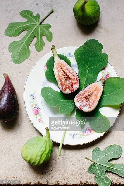 Figs from the tree