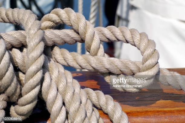 """""""figure eight""""  boating knot - number 8 stock pictures, royalty-free photos & images"""
