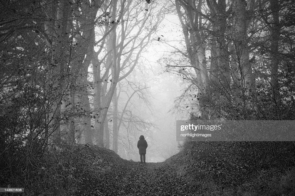 Figure in misty woodland : Stock Photo