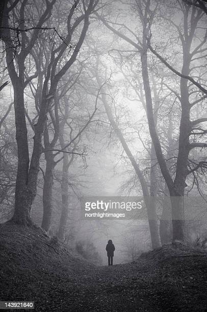 Figure in misty woodland