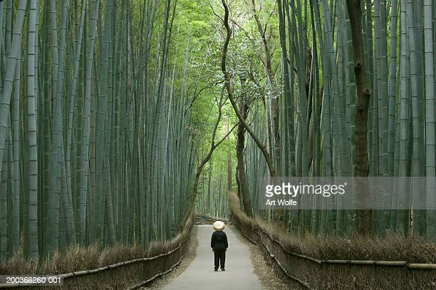 Figure on path bordered by bamboo, Kyoto, Honshu, Japan
