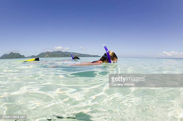 Fiji, Beqa Island, young man and woman snorkeling, side view