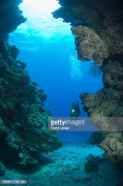 fiji, female scuba diver in underwater cave - submarino debaixo d'água - fotografias e filmes do acervo