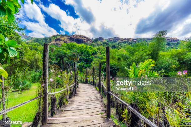 fiji islands, lautoka, garden of the sleeping giant, empty way - fiji stock pictures, royalty-free photos & images