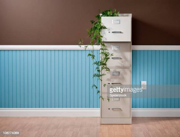 File Cabinet With Vines In Empty Home Office