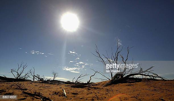 A file photo shows the sun shining on the outback landscape June 7 2005 near Marree Australia An Australian Federal Government report has found that...