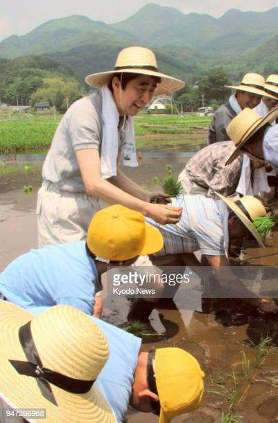 File photo taken in June 2003 shows Shinzo Abe taking part in a rice planting event in Yamanashi Prefecture when he was deputy chief Cabinet...