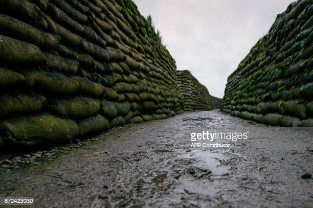 A file photo taken on February 14 2014 shows the Trench of Death were soldiers fought during World War One in Diksmuide West Flanders This November...