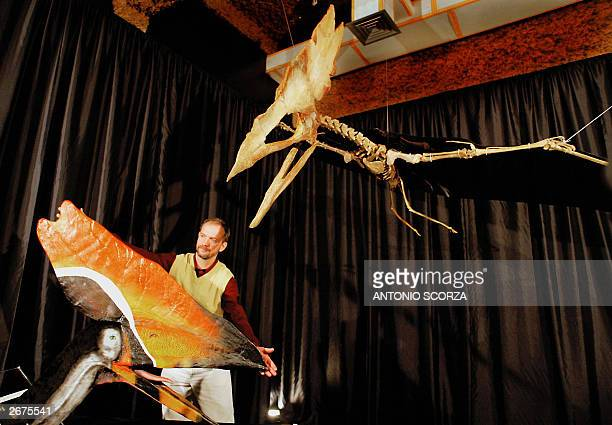 File picture taken 18 July 2003 shows Brazilian paleontologist Alexander Kellner presenting a reproduction of the Thalassodromeus sethi, a new...