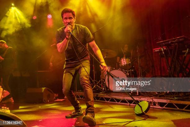 Files actor David Duchovny sings on stage in Dublin's Academy music venue