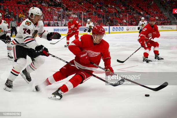 Filip Zadina of the Detroit Red Wings battle for the puck with Nicolas Beaudin of the Chicago Blackhawks during a pre season game at Little Caesars...
