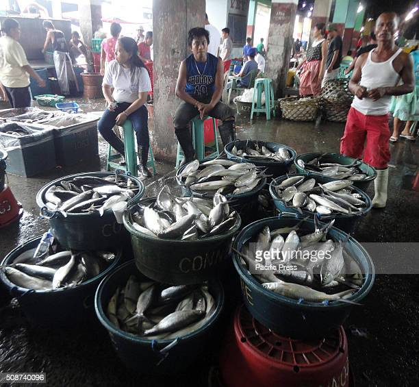 Filipino fish vendors look after milkfish being sold in Navotas Fish Port According to the Bureau of Fisheries and Aquatic Resources the prevailing...