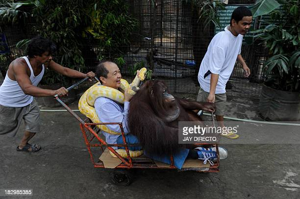 FilipinoChinese zoo owner Manny Tiangco is pushed in a cart along with his pet orangutan Manny Pacquiao and an albino python inside the Malabon Zoo...