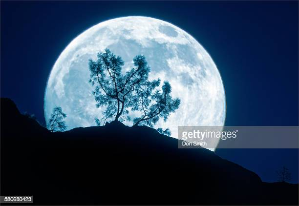 fill moon rise over high peaks - don smith stock photos and pictures