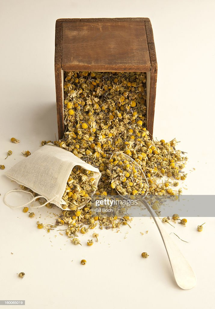 Filling dried chamomile : Stock Photo