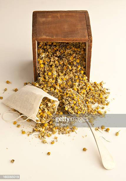 Filling dried chamomile