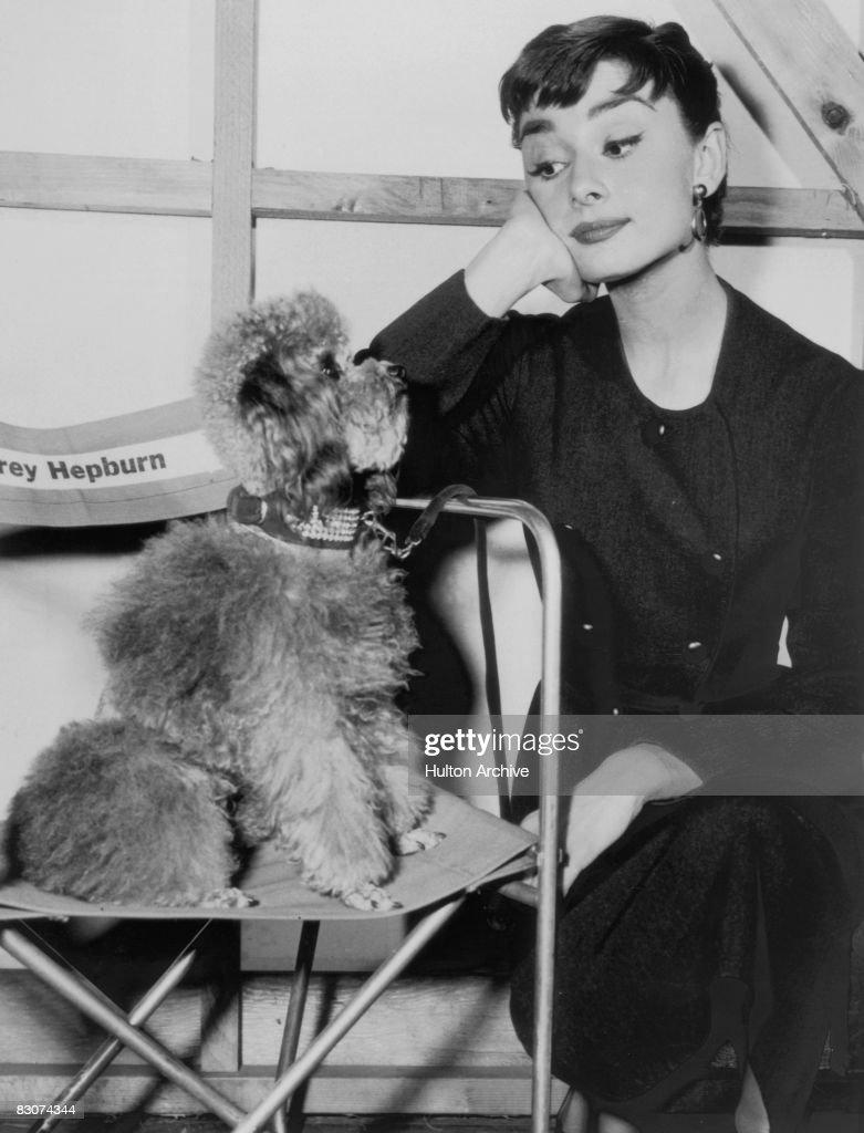 Hepburn And Poodle : News Photo