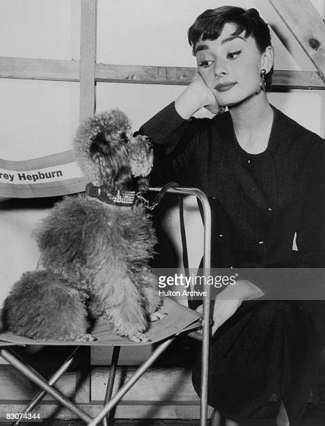 Film actress Audrey Hepburn on a film set with her pet poodle circa 1960