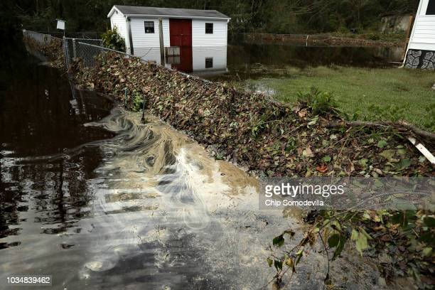 Filthy water seeps from detritus deposited from the Nuese River on the fence along George Skinner's property following flooding from Hurricane...