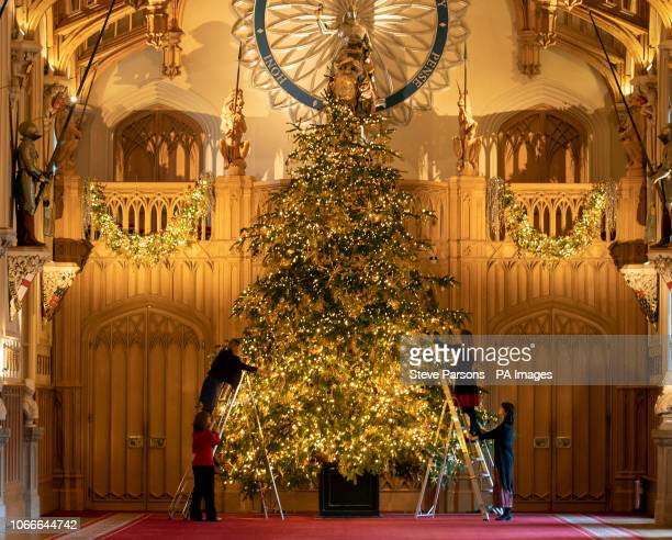 Final preparations are made to a 20ft Norman Fir Christmas tree in St George's Hall at Windsor Castle Berkshire which is being decorated for Christmas