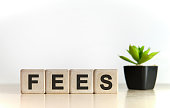 FEES - financial business concept. Wooden cubes and flower in a pot.