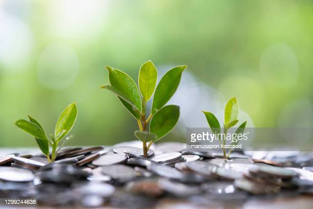 financial growth concept. - heap stock pictures, royalty-free photos & images