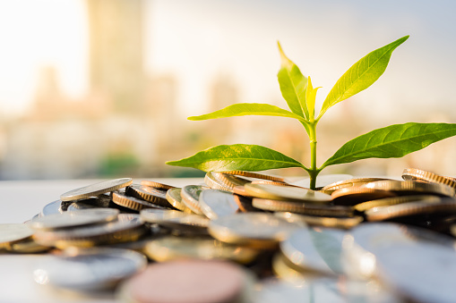 Financial Growth, Plant on pile coins with cityscape background 840202842