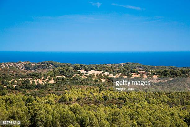 Finca and forest with Mediterranean Sea