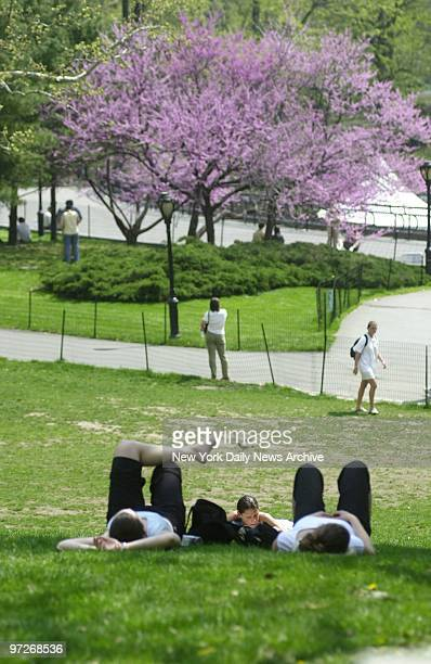 Finding a place to park can be a challenge in New York But on an unseasonably unreasonably hot day in April a spot on the grass near Central Park...