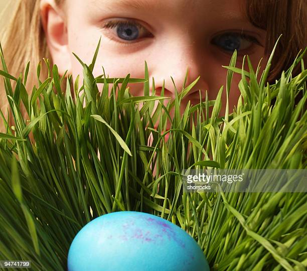 finding an easter egg - easter egg hunt stock photos and pictures