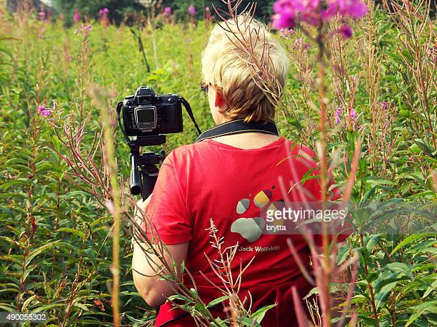 finding your path - digital camera stock pictures, royalty-free photos & images
