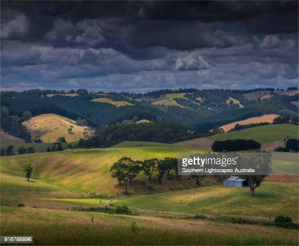 Fine agricultural landscape near Toora, coastal foothills of South Gippsland