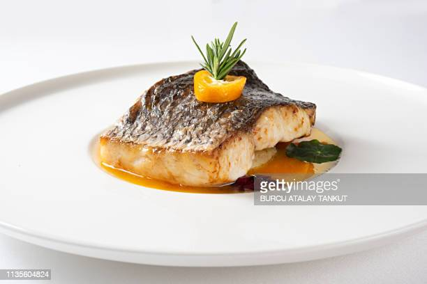fine dining grilled sea bass - pescado y mariscos fotografías e imágenes de stock