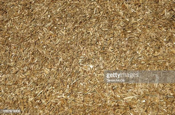 fine wood chips used as mulch in landscaping garden beds - mulch stock pictures, royalty-free photos & images