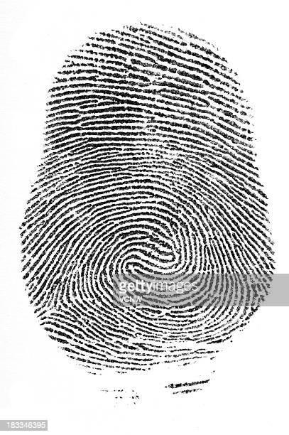 Finger print double loop whorl
