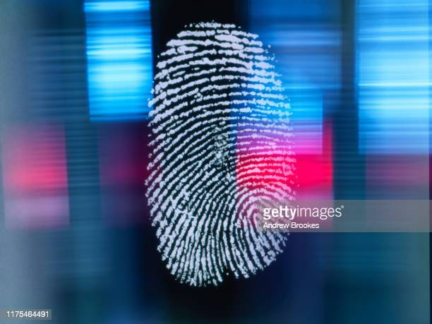 finger print on digital screen being scanned - data privacy stock pictures, royalty-free photos & images
