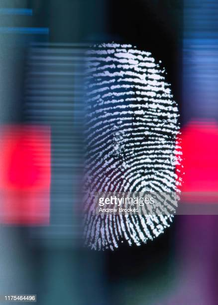 finger print on digital screen being scanned - password stock pictures, royalty-free photos & images