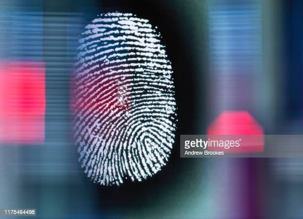 finger print on digital screen being scanned - identity stock pictures, royalty-free photos & images