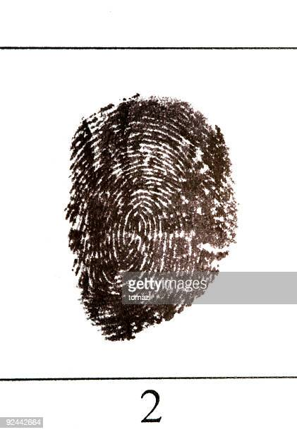 fingerprint close-up - fbi id stock pictures, royalty-free photos & images