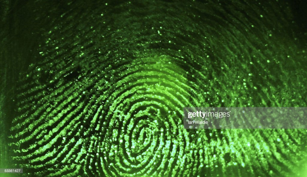 A fingerprint is scanned at Argus Soloutions August 11, 2005 in Sydney, Australia. The Australian Federal Government are considering including biometric data such as fingerprints, iris scans, or facial recognition on a national identity card in a bid to combat fraud, illegal immigration and terrorism. Details of individuals' biometrics would be stored on the card in an algorithmic code to prevent identity theft.