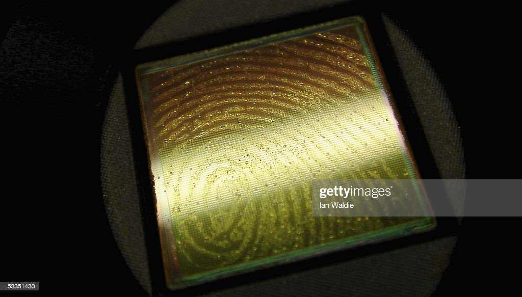 A fingerprint is seen on a scanning chip August 11, 2005 in Sydney, Australia. The Australian Federal Government are considering including biometric data such as fingerprints, iris scans, or facial recognition on a national identity card in a bid to combat fraud, illegal immigration and terrorism. Details of individuals' biometrics would be stored on the card in an algorithmic code to prevent identity theft.
