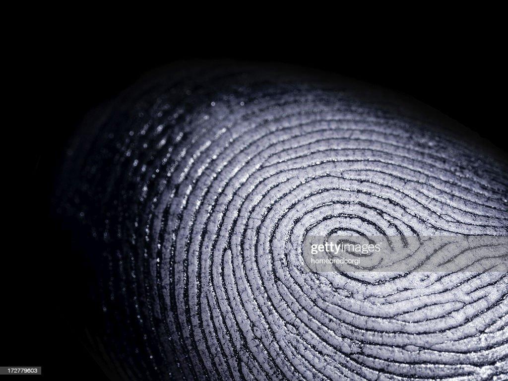 Fingerprint on Black : Stock Photo