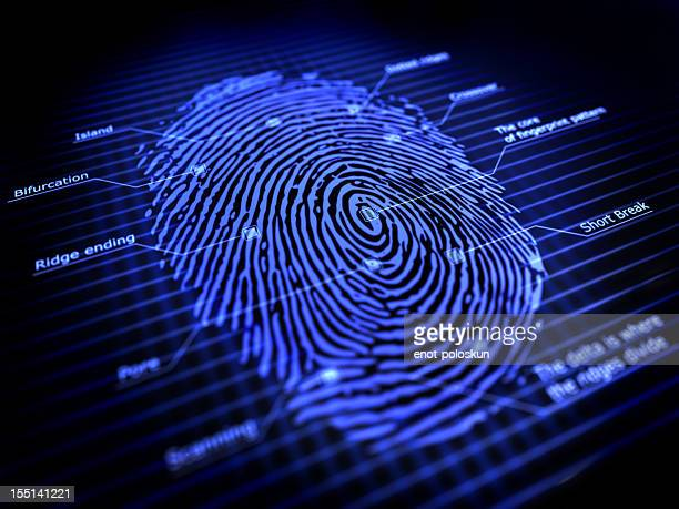 fingerprint - sensor stock pictures, royalty-free photos & images