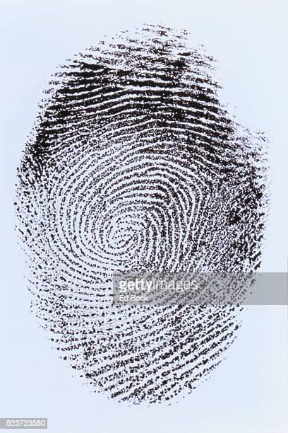 fingerprint - fingerprint stock pictures, royalty-free photos & images