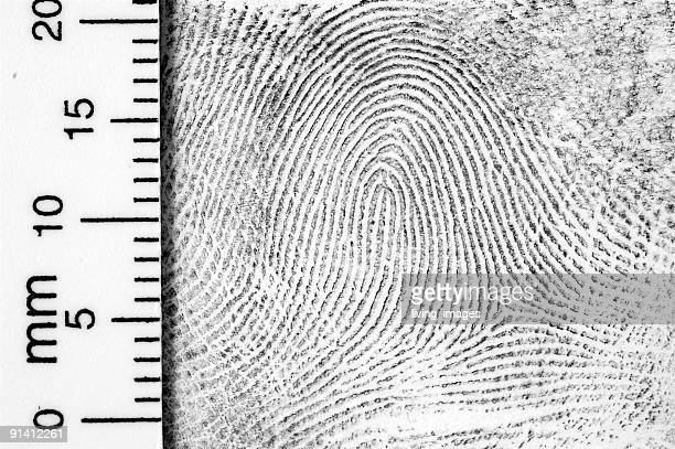 Fingerprint with ruler for measurement