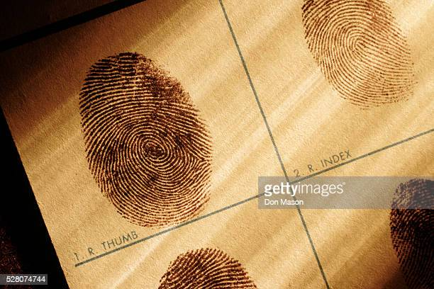 fingerprints chart - crime stock pictures, royalty-free photos & images