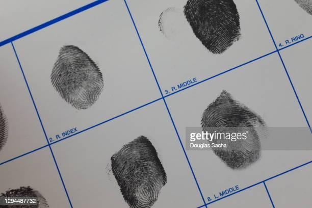fingerprints for backgr identification - police mugshot stock pictures, royalty-free photos & images