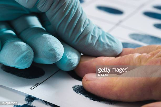 fingerprints - criminal investigation stock pictures, royalty-free photos & images