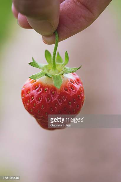 Fingers of a hand holding a fresh strawberry